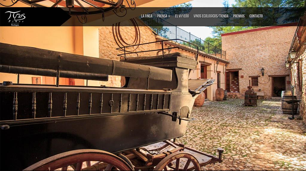 Bodegas_Los_Pinos_Lotus_Innovation